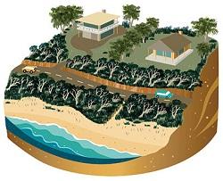 Coastal Scrub