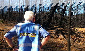 A Bushfire CRC researcher