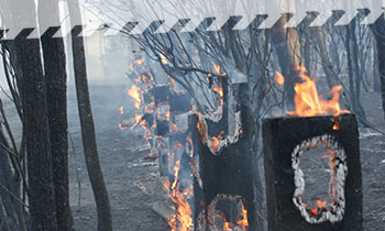 NSW RFS - Fencing damaged by a fire