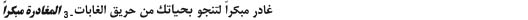 Arabic fact sheet title