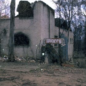 The aftermath of the Black Christmas fires on a winery, 2001.