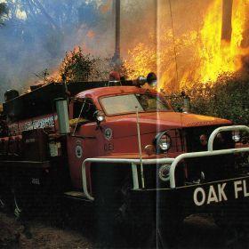 1981 Oak Flats Studebaker