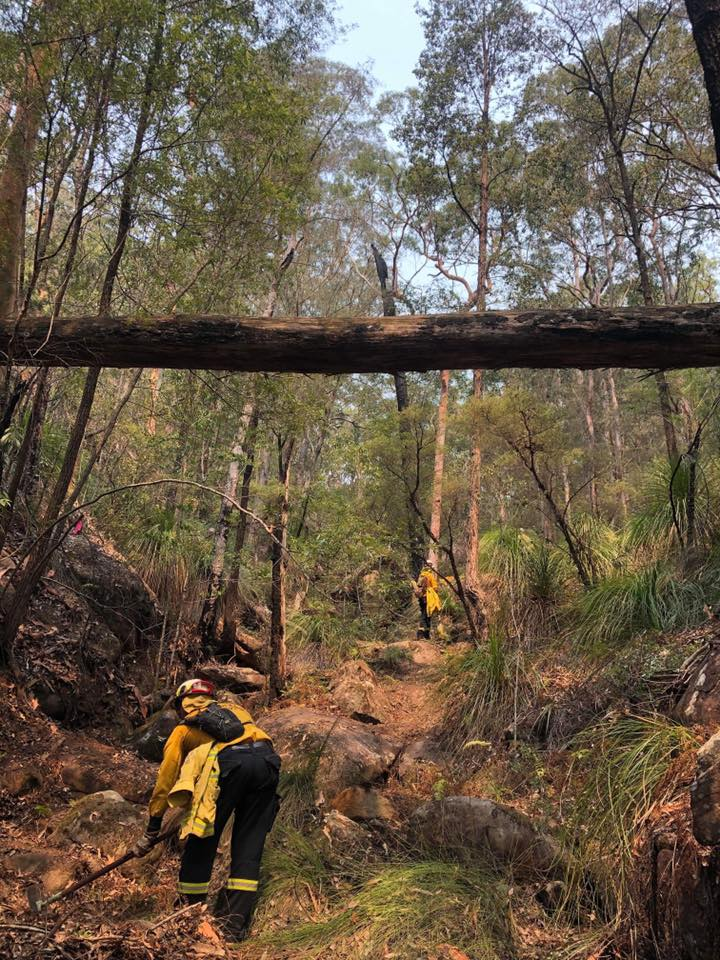 Grose Valley Fire Contained 1