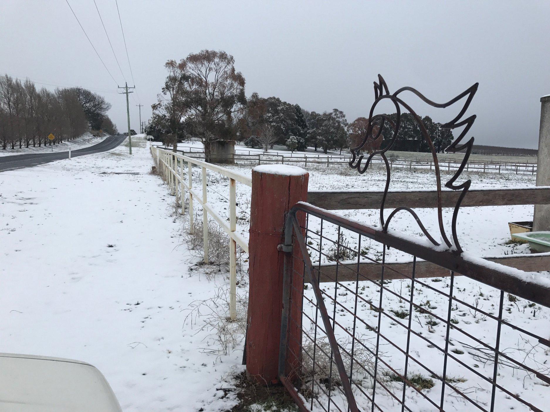 Tablelands snow 6