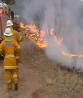 Bushfire-media-coverage-January-9th