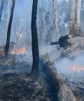 NSW GOVERNMENT MOVES TO PROTECT EMERGENCY WORKERS AND HOMEOWNERS FROM BUSH FIRE THREAT
