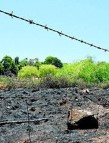 The burnt out area at Lone Pine Avenue