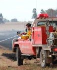 Fast action halts spread of Mogriguy grass fire