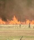 Narromine grass fire close to houses