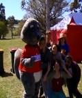 Clifton Grove Open Day and Prime Possum