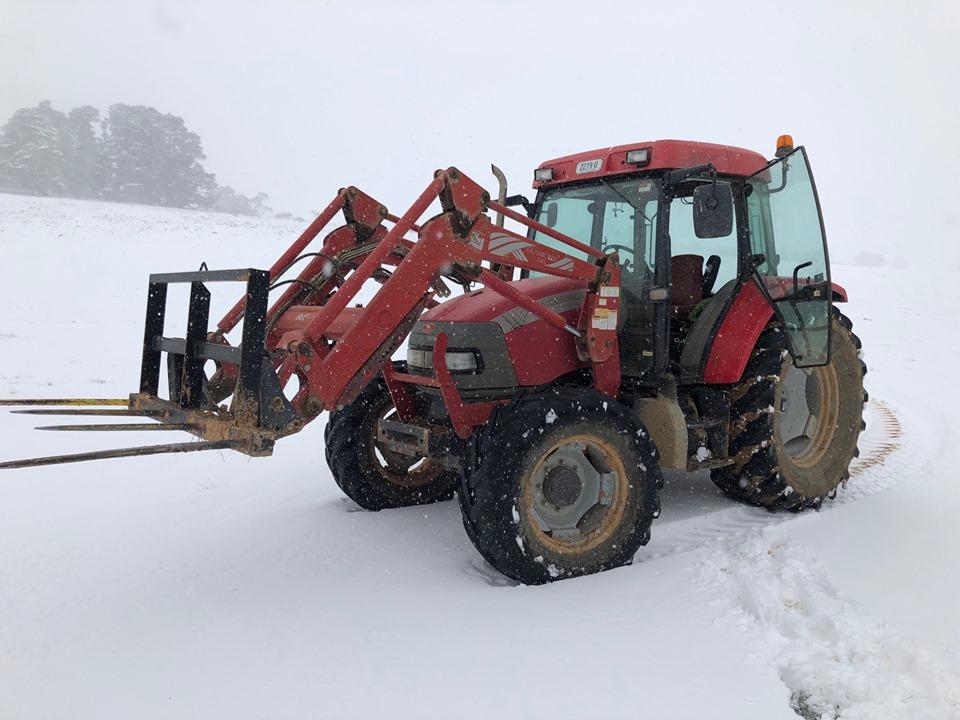 Tablelands snow 1