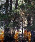 Campers blamed for Icely Road fire