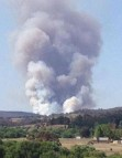 Central Mullion Forest Fire