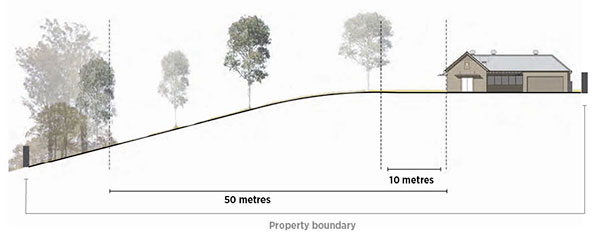 Image showing the clearing of trees within 10 metres of a home and vegetation within 50 metres of a home